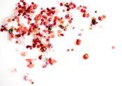 散りばめられた花