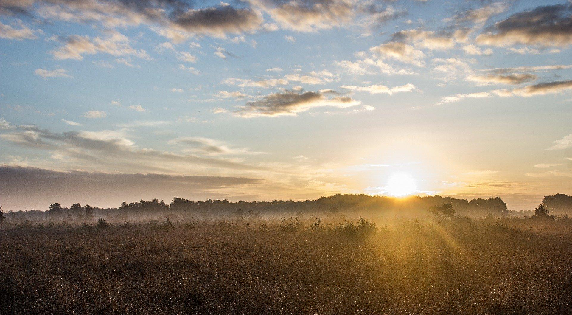 無料なのに効果絶大!朝の太陽で第1、第2チャクラを整える